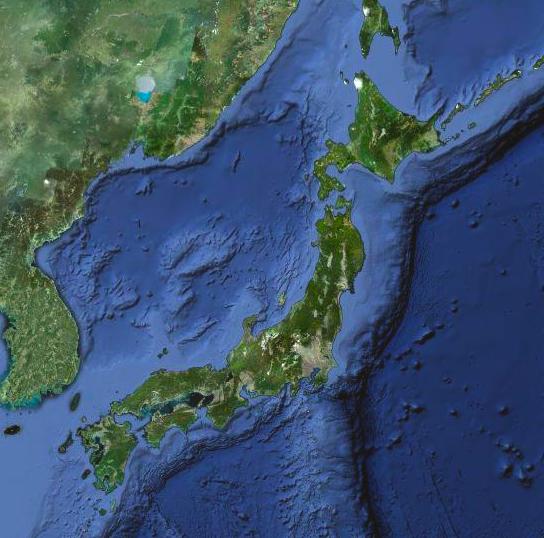 save_japan_0311.png